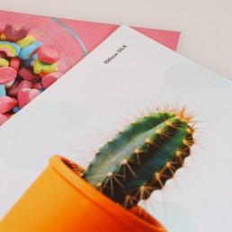 Hatch Print Sample Pack - Postcards